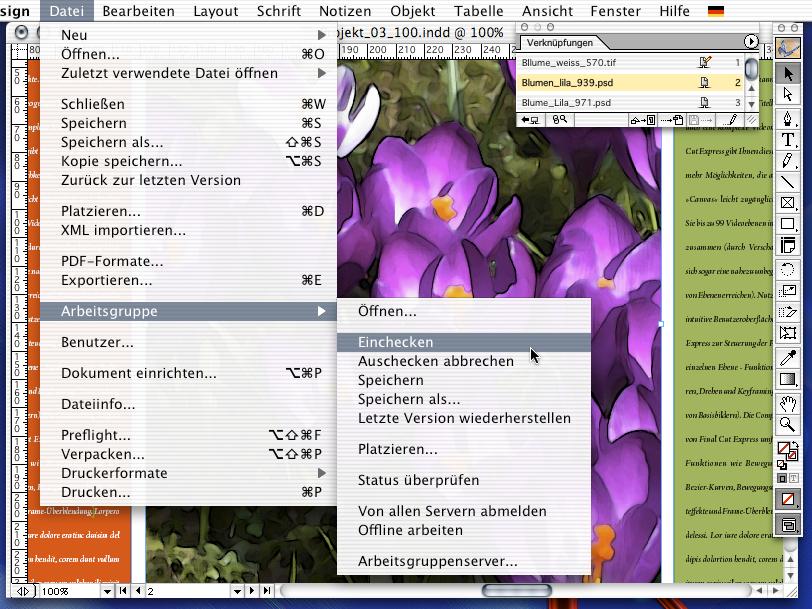 Das Übertragen von Änderungen auf den Server und Aufheben der Sperre gelingt durch sogenanntes Einchecken der Datei auf dem Arbeitsgruppenserver