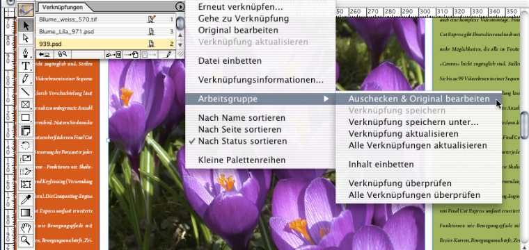 Adobe InDesign in Arbeitsgruppen: Teamwork mit WebDAV