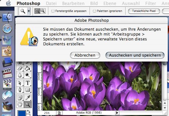 """Öffnet man ein """"verwaltetes"""" Objekt beispielsweise in Adobe Photoshop 7 ohne die Arbeitsgruppenfunktionen zu berücksichtigen, erhält man nur eingeschränkten Zugriff auf die Datei"""